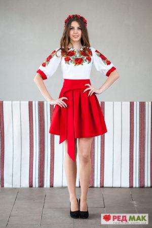 Плаття / вишиті сукні